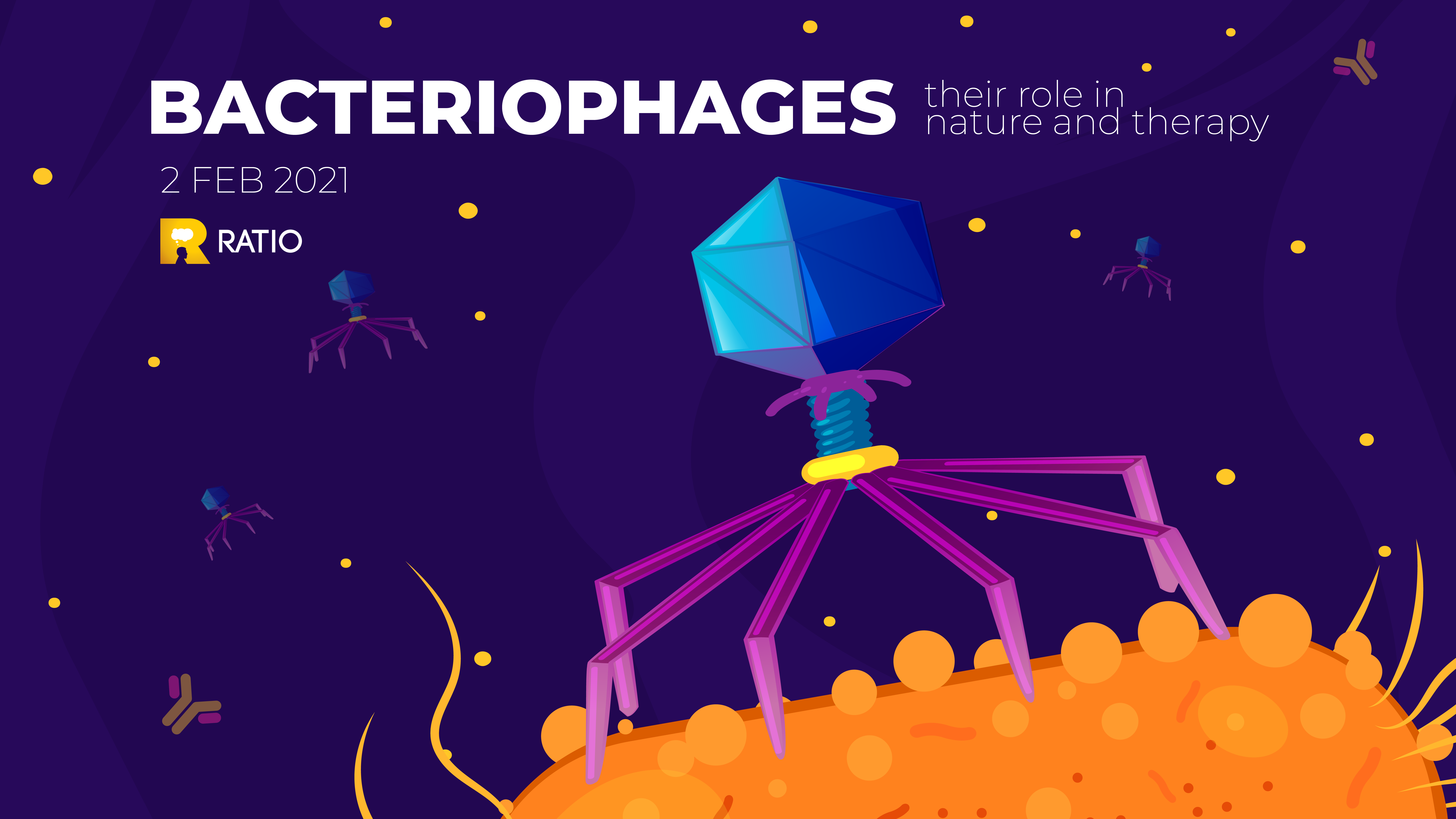 Ratio presents: Bacteriophages